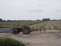 WAT120003602 Land naast de boerderij aan de Oosterweg nummer E 36.