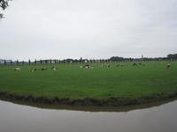 WAT120003608 Weiland tegenover de boerderij aan de Oosterweg nummer E 9.
