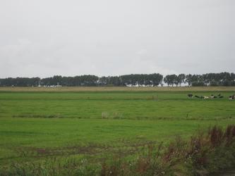 WAT120003623 Foto gemaakt vanaf de Edammerweg, weiland links van het gemaal aan de Purmerdijk nummer 4.