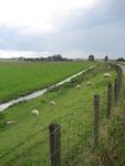 WAT120003305 Weiland links van de stolpboerderij aan de Purmerdijk nummer 14.