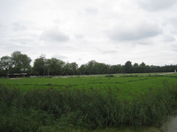 WAT120003372 Evenemententerrein: hoek Westerweg / Purmerenderweg.