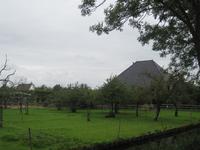 WAT120003412 Stolpboerderij de Bonte Koe met boomgaard.