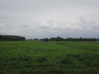 WAT120003438 Land gelegen naast Westerweg 18.