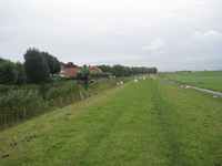 WAT120003614 Rechts zien we een stukje van de Purmerdijk, links zien we een aantal panden aan de Groot Westerbuiten in Edam.