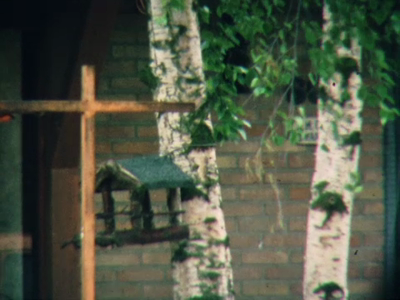 10183 BB02226 Tweede deel van een documentaire over natuur, werken, leven en wonen in Schalkhaar. Opnames met een ...