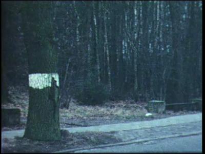 10540 BB02259 Reportage over de werkzaamheden waarbij Het Weterman is omgevormd van bos naar woonwijk. Getoond wordt ...