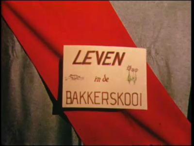 11232 BB02898 Een film, rond de Bakkerskooi, een eendenkooi in het natuurgebied De Wieden.