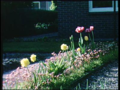 11543 BB02923 Straat met bloeiende tulpen.Muziekpavaljoen in straat.Gereformeerde kerk van buiten.Christelijke ...