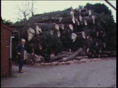 11554 BB02934 Een film met diverse beelden van o.a. een man bij een stapel boomstammen op een houtzagerij, een rit met ...