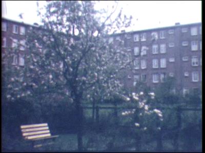 12154 BB02428 Reportage over het bloemencorso te Borne in 1963. Beelden van het publiek en de optocht met o.m. ...