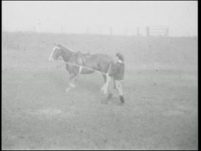 13774 BB02604 Film over de paardensport. Beelden van de Landelijke Rijvereniging Rijden is een Kunst in ...