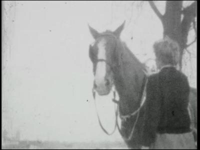 13777 BB02607 Dalfsen: paard met arrenslee in de sneeuw; paardrijden in de sneeuw.Chalet 1963: wintersport, langlaufen ...