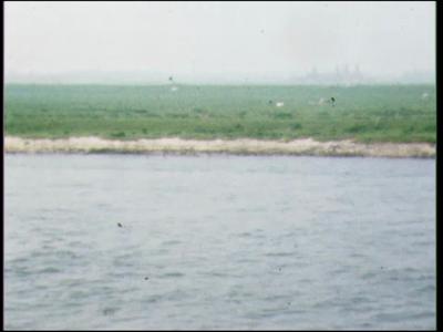 5031 BB07721 Een film rond de vondst van een 'drenkeling', met beelden van:- Een reddingsboot op de IJssel bij ...
