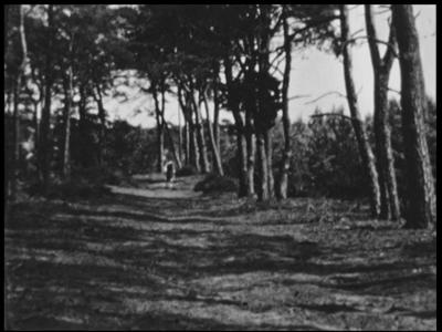 5918 BB03420 Samenvatting:Privé-opnames van Hellendoorn en hotel-pension De Uitkijk. De film is opgenomen door J. ...