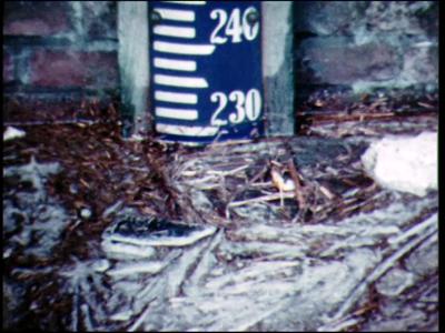 6038 BB04986 Beelden van hoogwater in de IJssel rivier bij Kampen in de winter.Eerste beeld: peilstok in water;Laatste ...