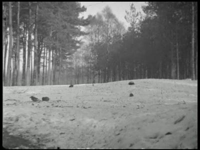 7147 BB04473 Een film met de volgende beelden;- De Holterberg in de winter met reeën;- Een jager vindt een dode ...