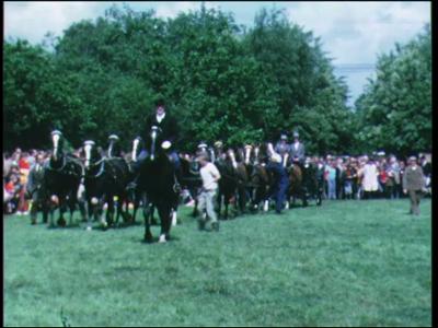 8940 BB06714 Een wedstrijd paardenmennen in Zwolle, met een zg. 12-span van een combinatie uit Hattem., 1980-00-00