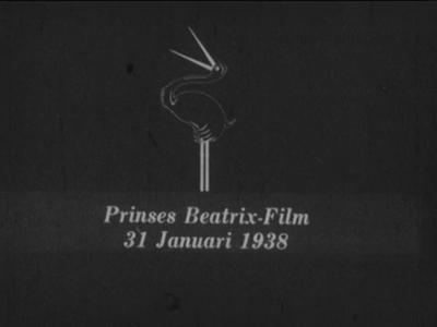 8971 BB06747 Samenvatting:Reportage over de feestelijkheden in Hengelo rond de geboorte van prinses Beatrix op 31 ...