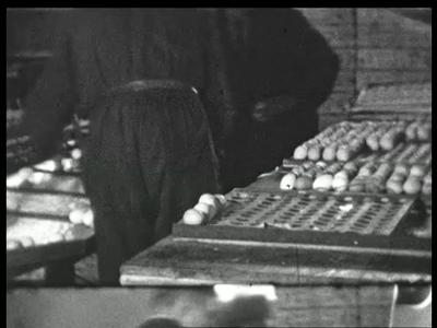 9817 BB02183 Een film, eind jaren dertig, rond de werkzaamheden bij het eierverwerkingsbedrijf van de Oostelijke ...