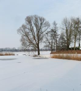 4141 DBUITERWIJK-001537 Winter en Sneeuw in Zwolle - Aa-landen-dijklanden, 2013-01-22