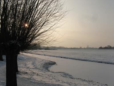 4142 DBUITERWIJK-001538 Winter en Sneeuw in Zwolle - Aa-landen-dijklanden, 2013-01-22