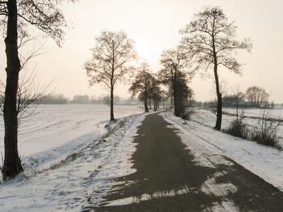 4146 DBUITERWIJK-001542 Winter en Sneeuw in Zwolle - Aa-landen-dijklanden-Urksteeg, 2013-01-22