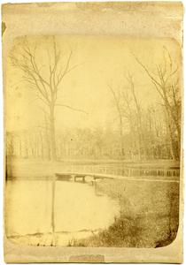 12935 FD032566 Bruggetje op landgoed Tweenijenhuizen in Vollenhove, 1882-00-00