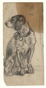 1113 -TP000977 Een afbeelding van een hond. De kop van het dier naar links.