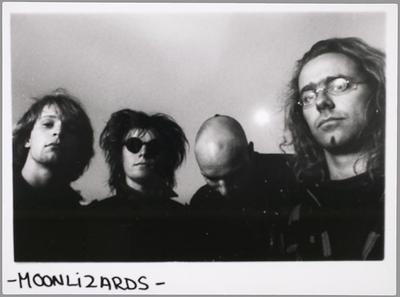 Moonlizards